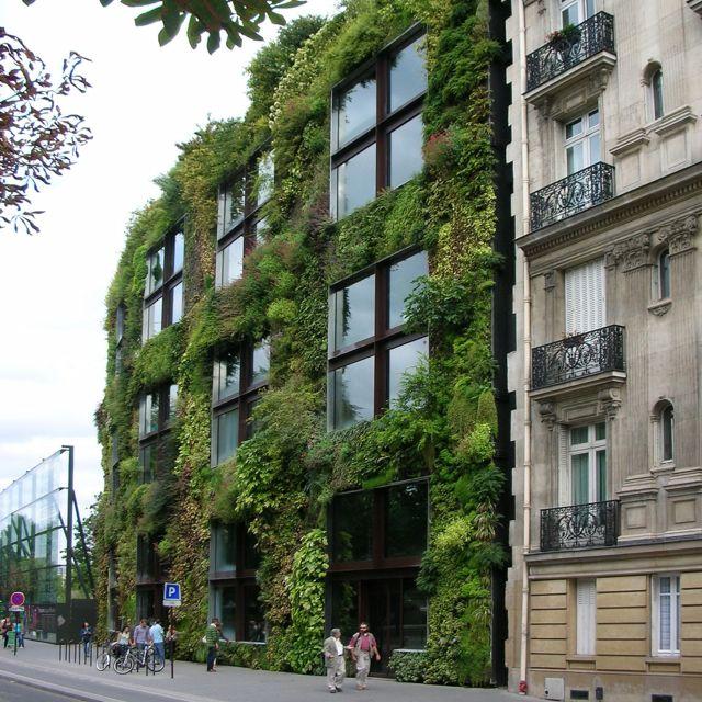 Jean Nouvel's Musee du Quai Branly.
