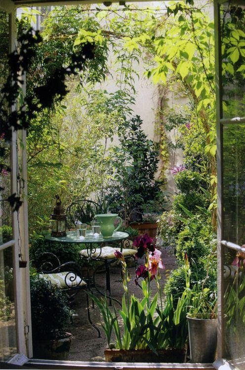 Petite cour petite terrasse cour verte terrasse plantes for Petite plante exterieur