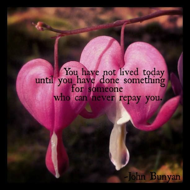 Bleeding Hearts Live Give Quote Giving Quotes Inspirational Quotes Words