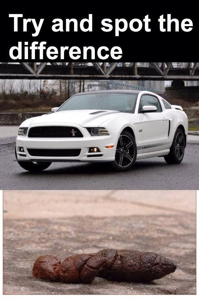 Mustang Ford Shit Mockery Spot The Difference Ford Jokes