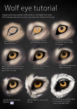 Tutorial: Dog eye by CobraVenom on DeviantArt