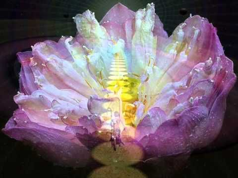 L'Evoluzione dell'Uomo Spirituale - 5^ parte di 6 - da La Vita Divina di Sri Aurobindo - YouTube