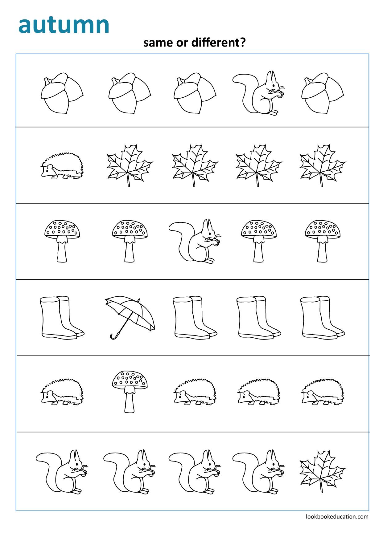Same Or Different Fall Autumn Worksheet Preschool Kindergarten And First Grade Workshee Fall Preschool Worksheets First Grade Worksheets Seasons Worksheets [ 1756 x 1242 Pixel ]