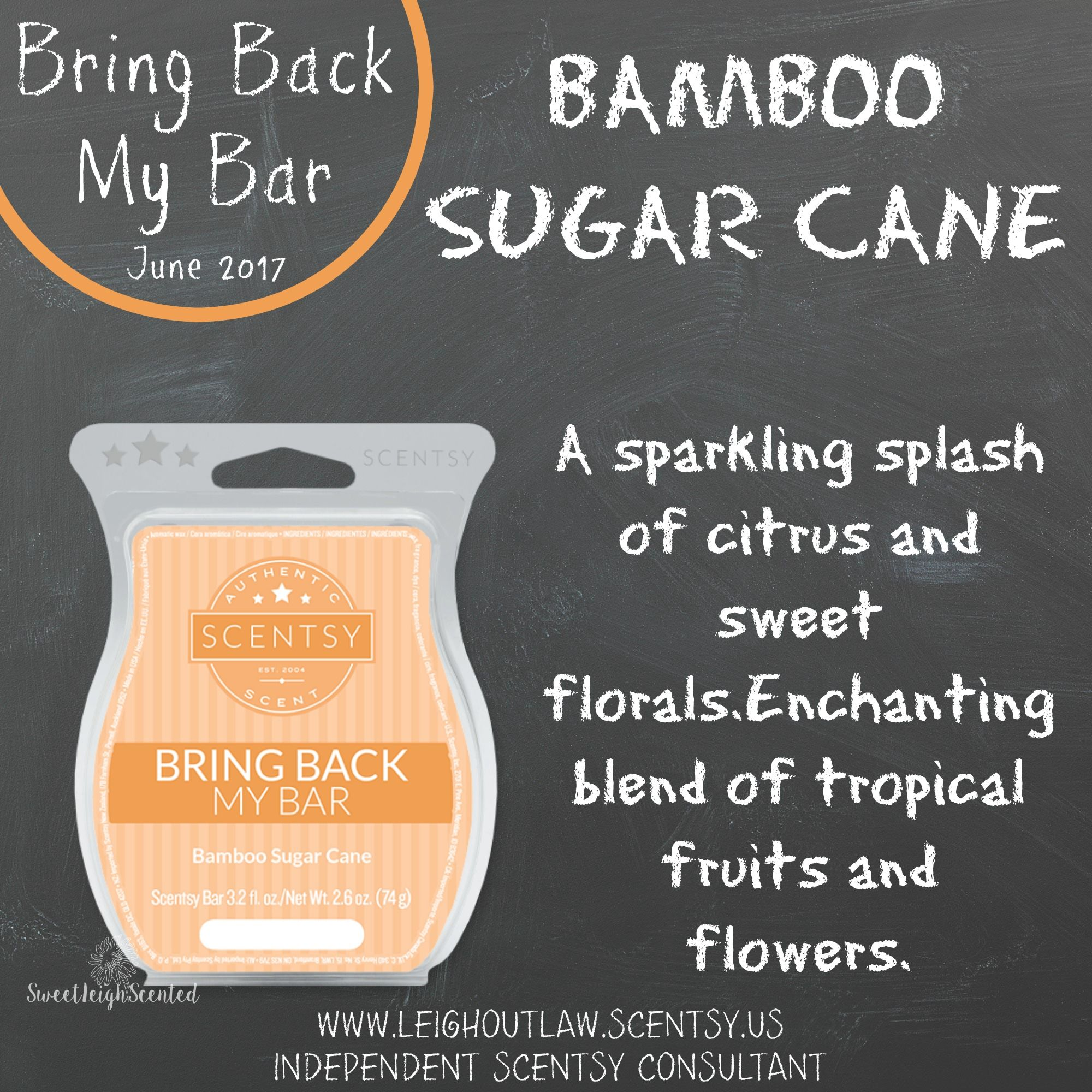 Bring Back My Bar Bamboo Sugar Cane Scentsy Bbmb
