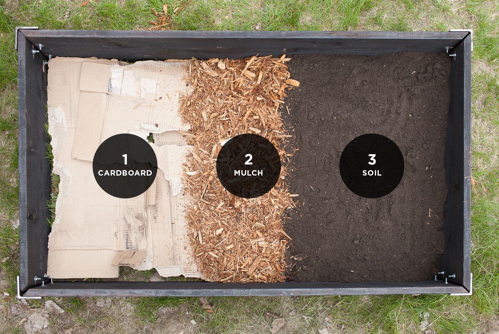 medium resolution of raised garden bed layers the fresh exchange cardboard mulch soil