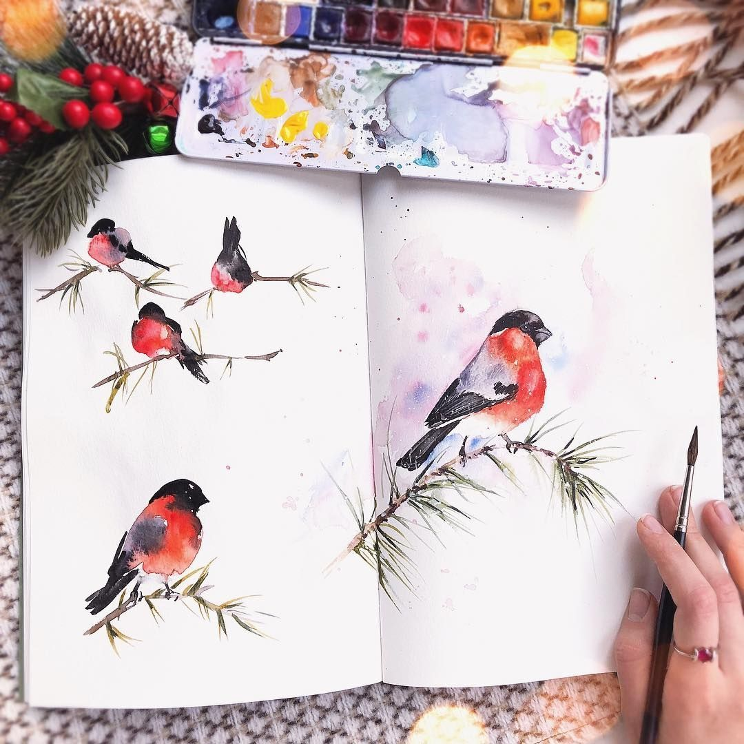 More Art Watercolor Illustrations Watercolorist