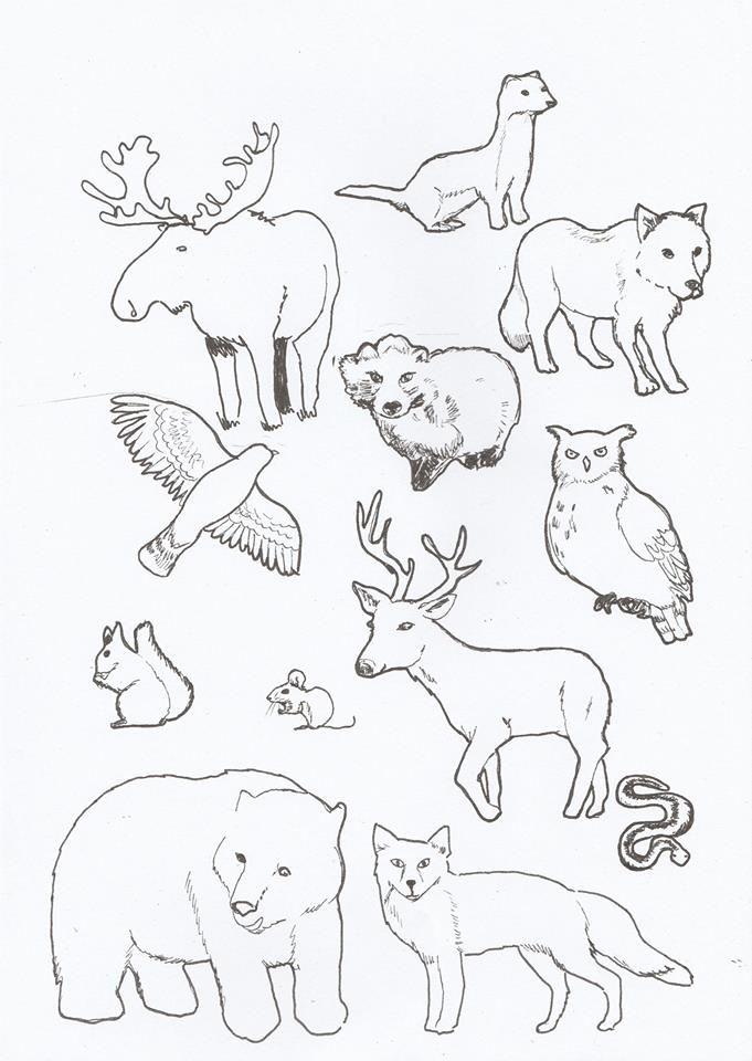 esim. A3 kokoiselle paperille piirtää metsän vahaväreillä tms, värittää tämän värityskuvan eläimet, leikkaa ja liimaa ne metsäkuvan päälle. Laura Mattila/Alakoulun aarreaitta/FB