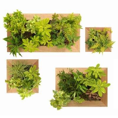 Jardin vertical int rieur lo que me gusta jardines jardines verticales y flores - Jardin vertical interieur ...