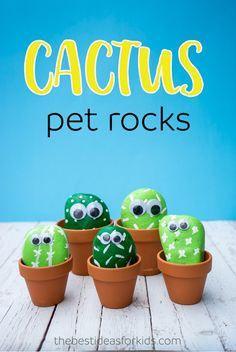 These pet cactus roc