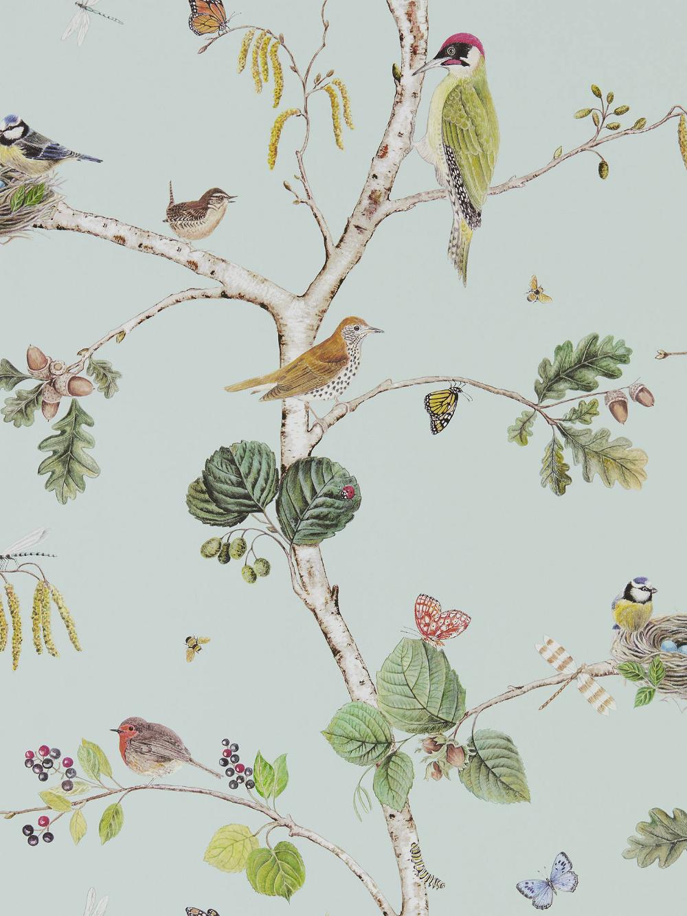 Sanderson Woodland Chorus Wallpaper, Sky Blue / Multi