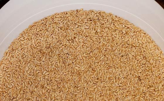 Benefits of Milling Your Own Flour -Posted March 29, 2014, by Ken Jorgustin