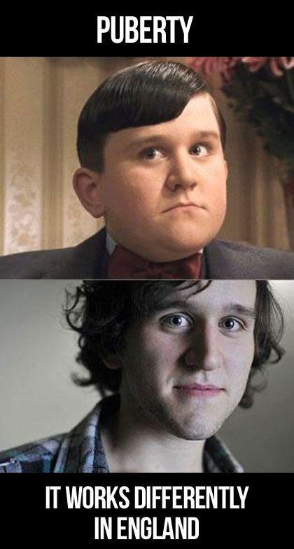 Puberty Harry Potter Jokes Harry Potter Memes Harry Potter Funny