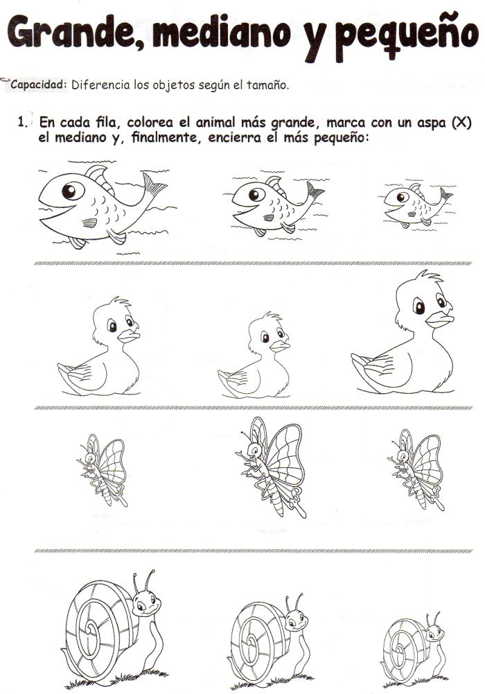 Ficha imprimible de matemáticas para 5 años. Tema: grande, mediano y ...