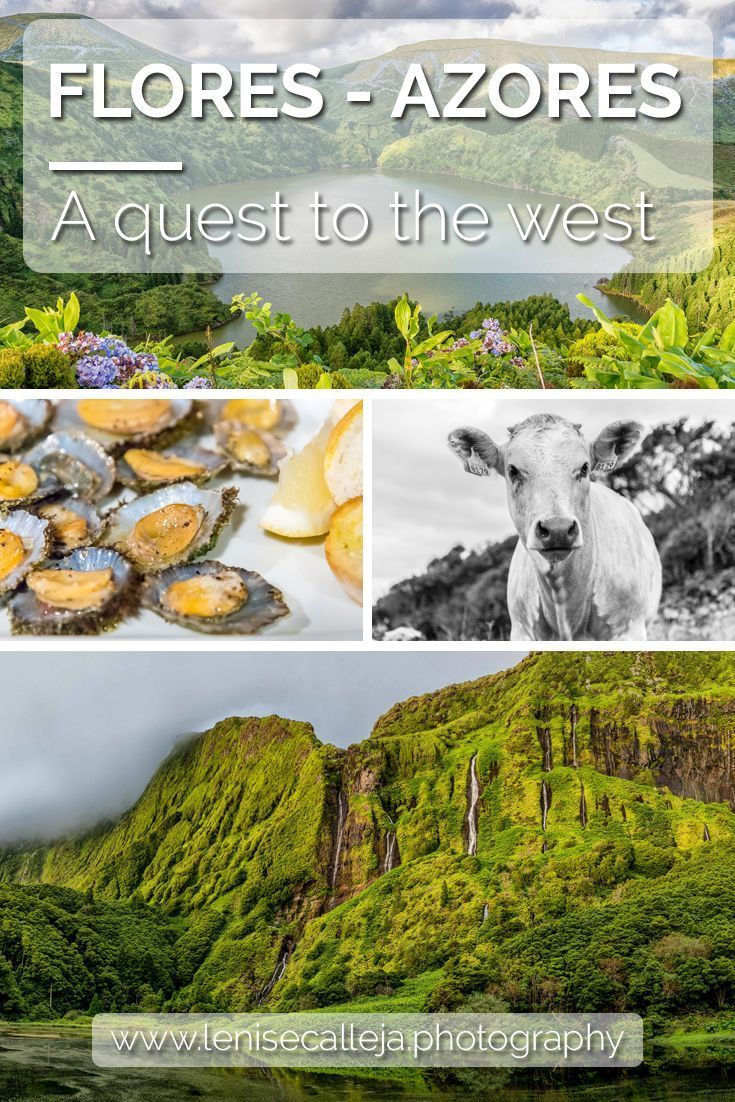 A collection of photos of the beautiful landscapes of Flores in the Azores islands Portugal // Find Inspiration, Bucket List Ideas, Travel Bucket List Things To Do, #bucketlist #travelinspiration #travellerstale #travelmore #dreams #goals