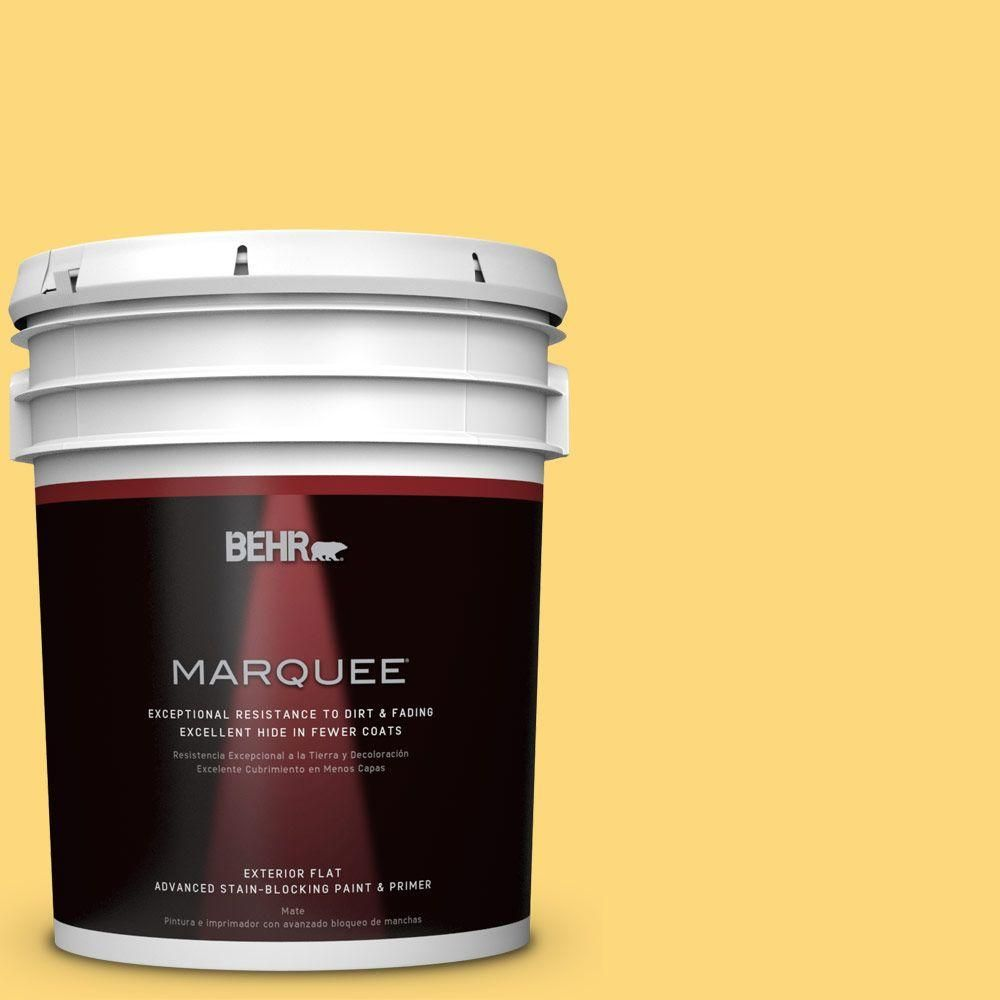 BEHR MARQUEE 5 gal. #hdc-SM16-05 Deviled Egg Flat Exterior Paint