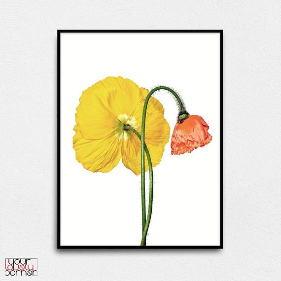 Poppy Flowers Modern Printable Wall Art Pink & Yellow Poppies ...