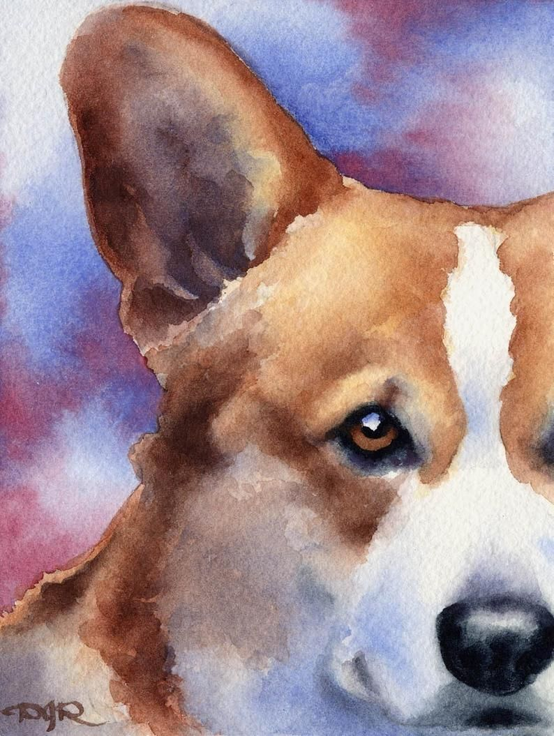 23+ Cartoon corgi coloring pages ideas in 2021