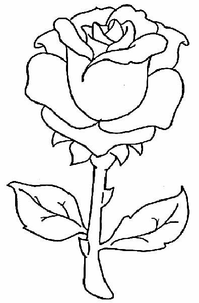 Rose Drawings But Also Paintings And Prints Painting Patterns Flower Coloring Pages Roses Drawing