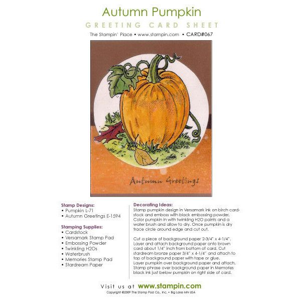 Autumn Pumpkin SET067 ❤ liked on Polyvore featuring home, home decor, autumn home decor, fall home decor and pumpkin home decor