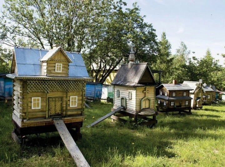 fancy bee hives | Fancy bee hives    | Off Grid Living