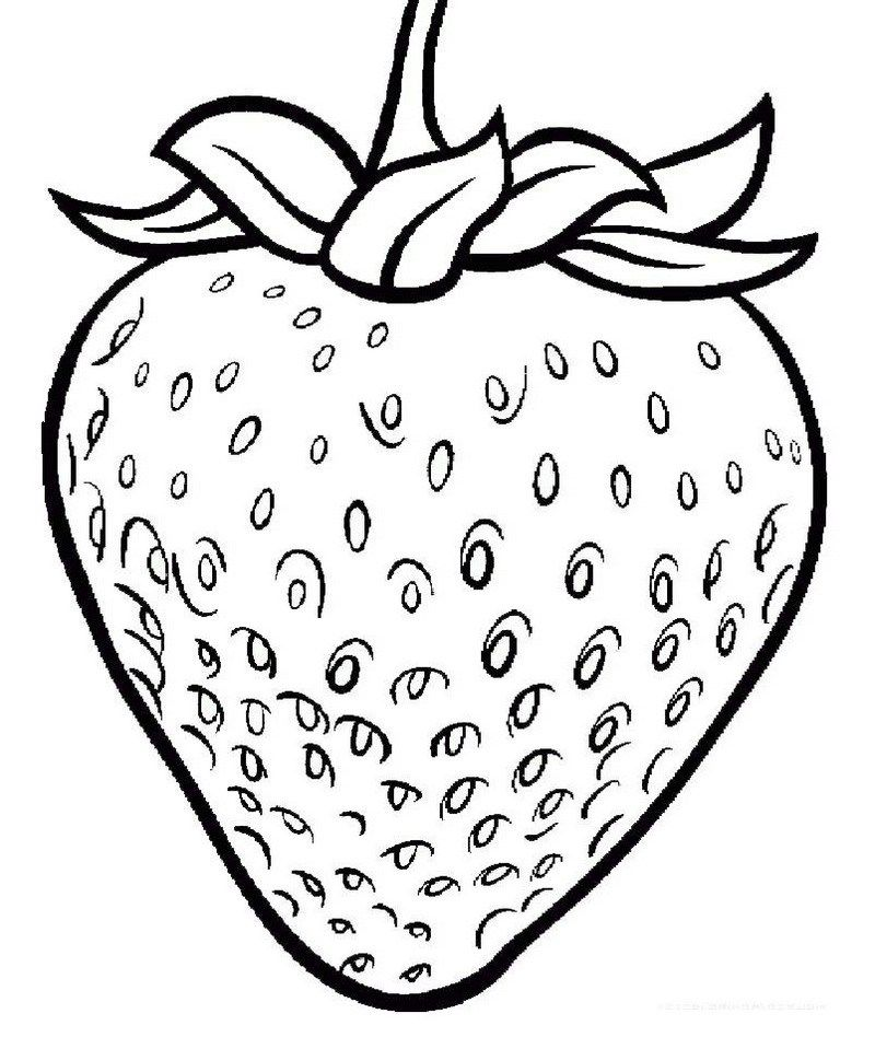One Large Strawberry coloring page printable | Fruit coloring page ...