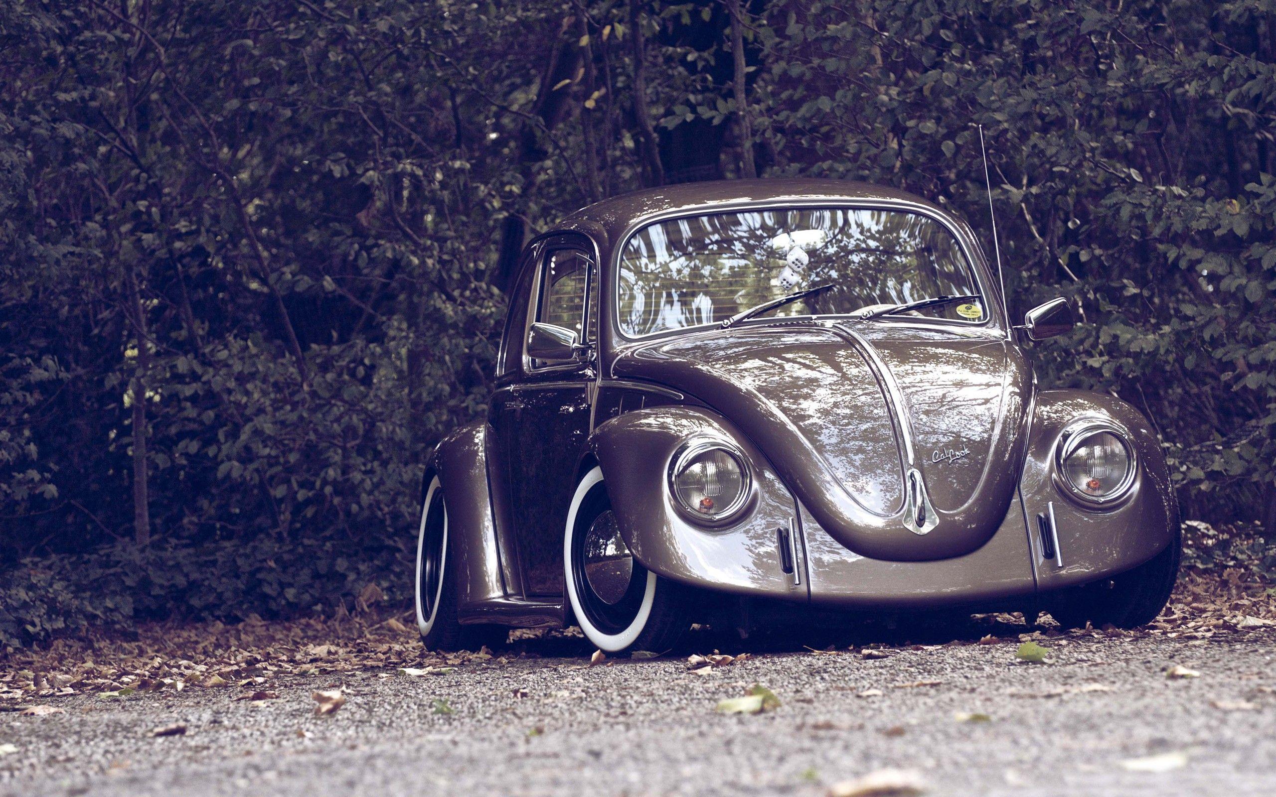 vw beetle cars wallpaper hd | fusca | pinterest | beetle car, car