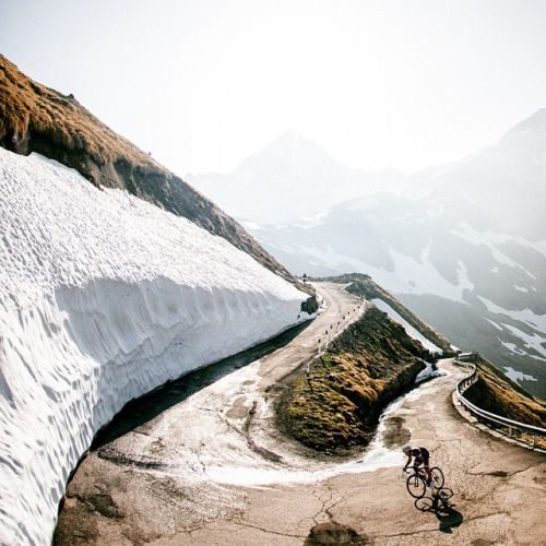 cadenced:  Gavia morning by Jered Gruber