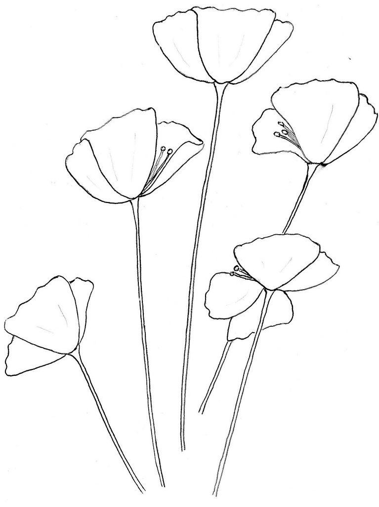 Gallery For > California Poppy Outline | #inked ...
