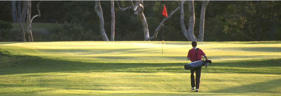 Golf Course: The  Estate has its own convenient golf course, with a panoramic view of Monte Pratomagno, and has a covered driving range with an automatic ball distributor; an instructor is available to guests for lessons and short courses.