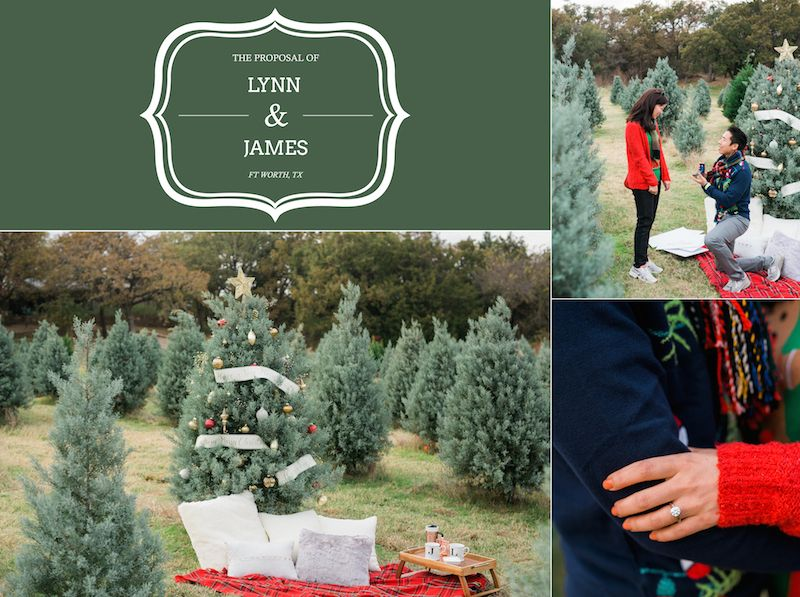 Christmas Tree Farm Proposal By The Yes Girls Events Tree Farm Proposal Tree Farms Christmas Tree Farm