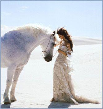 تفسير الحصان الأسود في الحلم رؤيا حصان أسود في المنام Horses Horse Posters Beautiful Horses