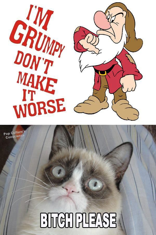 Im Grumpy, don't make it worse! B*tch please