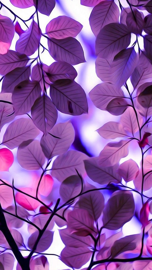 Purple Leaves 640 X 1136 Wallpapers Dostupny Dlya Besplatnogo