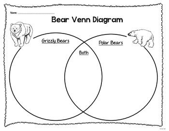 Use this diagram to compare and contrast grizzly and polar