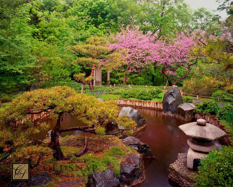 Etonnant MN Arboretum In Spring | ... Mn Landscape Arboretum/thumbs/thumbs_japanese  Garden In Spring Prohann
