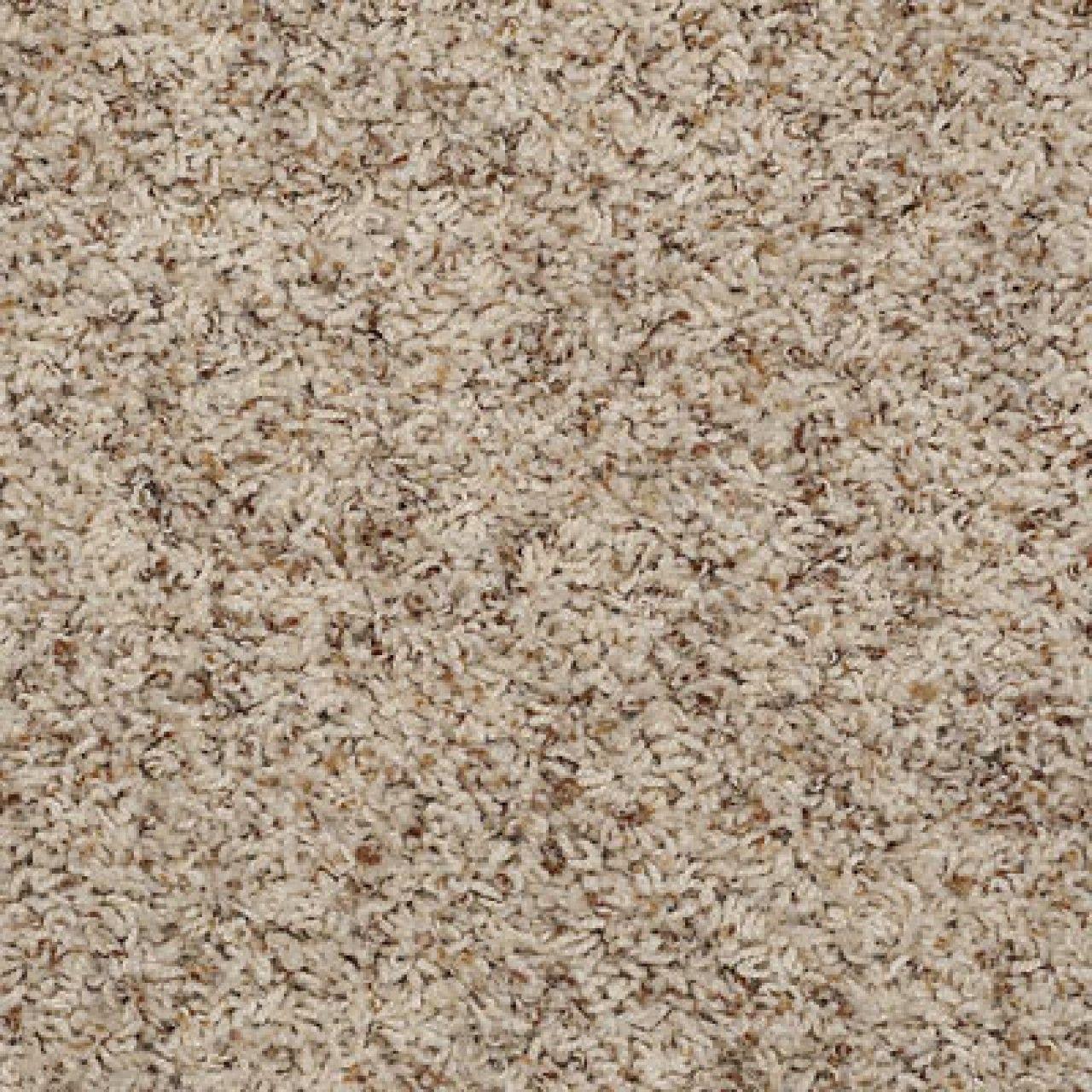 Color 00263 Sandbox Q4532 Alamar B Shaw Anso Nylon Carpet Georgia Industries