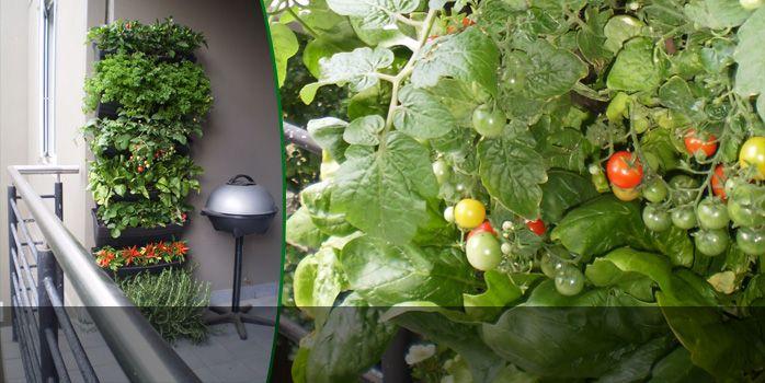 Wall Gardening Diy Vertical Garden Green Wall Living 400 x 300
