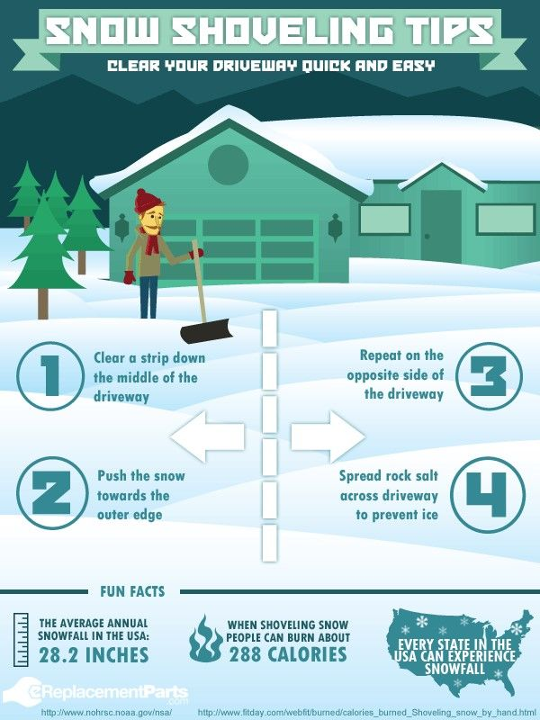 Snow Shoveling Tips Cleanup Snow Removal Pet Waste