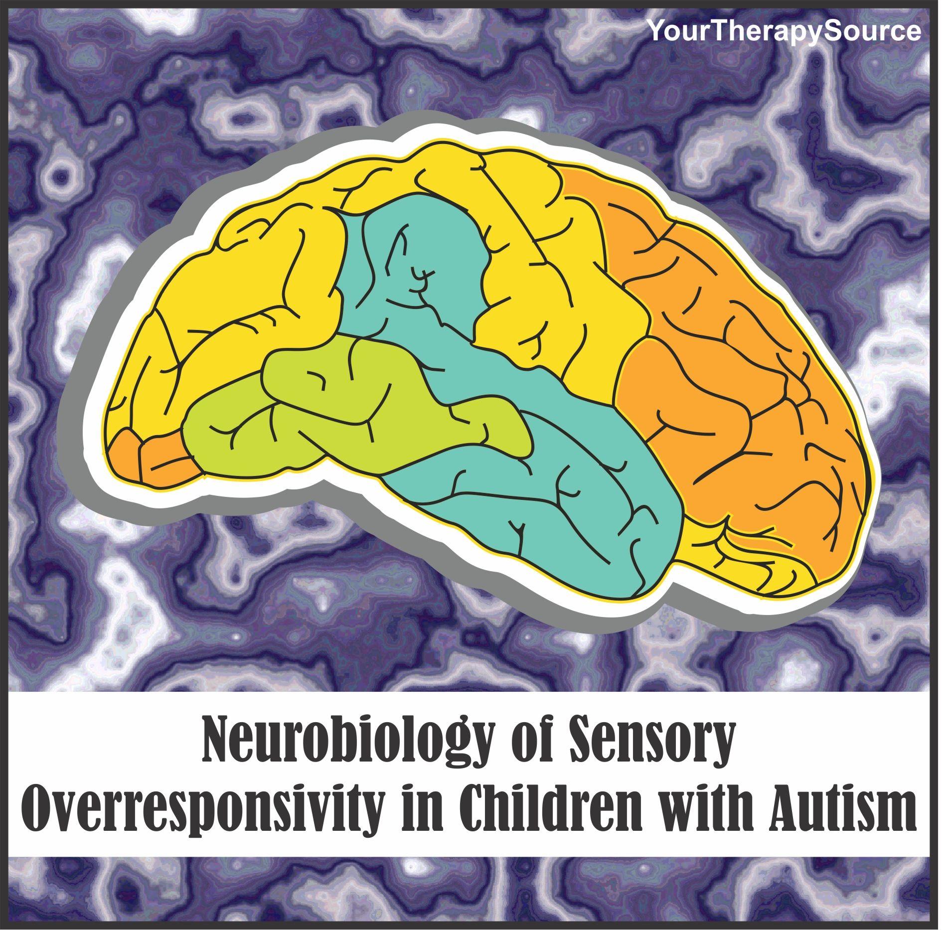Somatic Senses Education: Neurobiology Of Sensory Overresponsivity In Children With