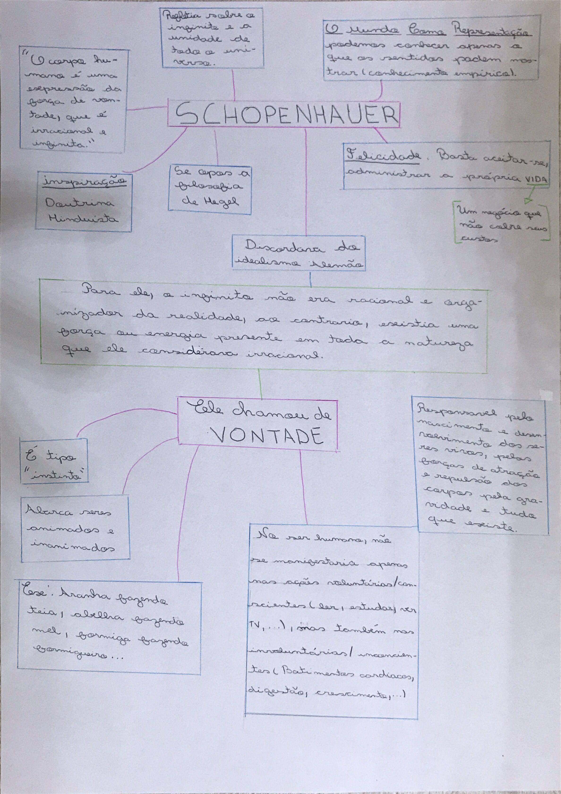 Mapa Mental Schopenhauer Com Imagens Resumos Enem Como