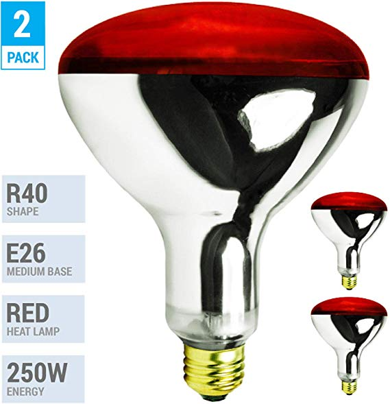 Amazon Com Pack Of 2 K21761 250r40 Hr 250 Watt Incandescent R40 Reflector Red Head Lamp Heat Flood Lamp Light B In 2020 Heat Lamps Lamp Light Infrared Light Bulb