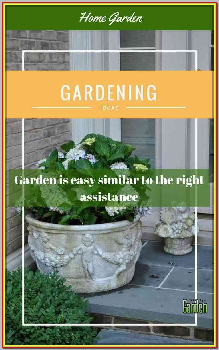 A Great Gardening Tip To Use Is Always Select Types Of Plants That Are More Likely Produce High Yield Visit The Image For Additional Information