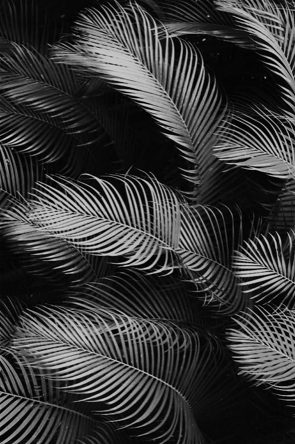 Designspiration Design Inspiration Black And White Wallpaper Black And White Background Black And White Aesthetic