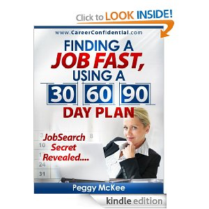 Great Tool For Jobseekers  Day Plan Ebook By Peggy
