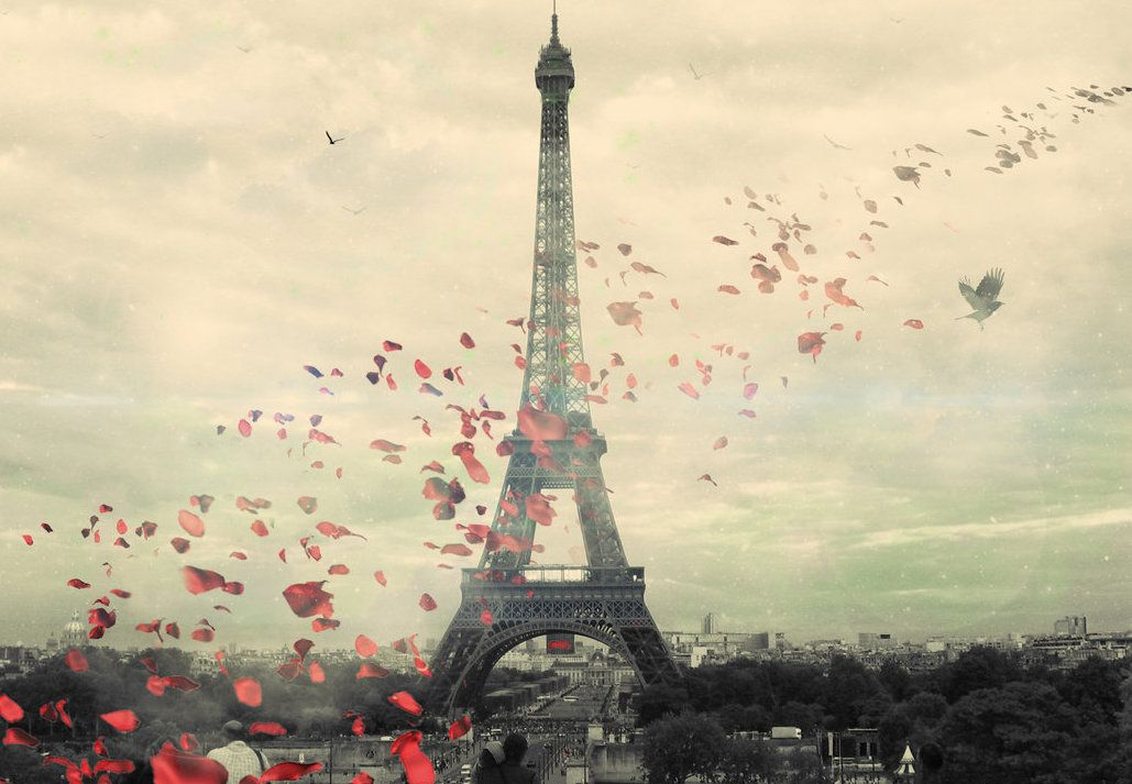 Travel Tips and Tricks: Paris travel guides and tips