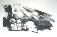 Chris Van Hove (Impresor/Grabador) Los materiales básicos para la litografía son la piedra calcárea, los carborundos, los rodillos de cuero y caucho, las tintas al aceite de impresión, la goma arábiga natural, los crayones, los lápices y las tintas de dibujo, y por supuesto, las prensas litográficas de impresión directa e indirecta. (Artesanía de Tenerife)