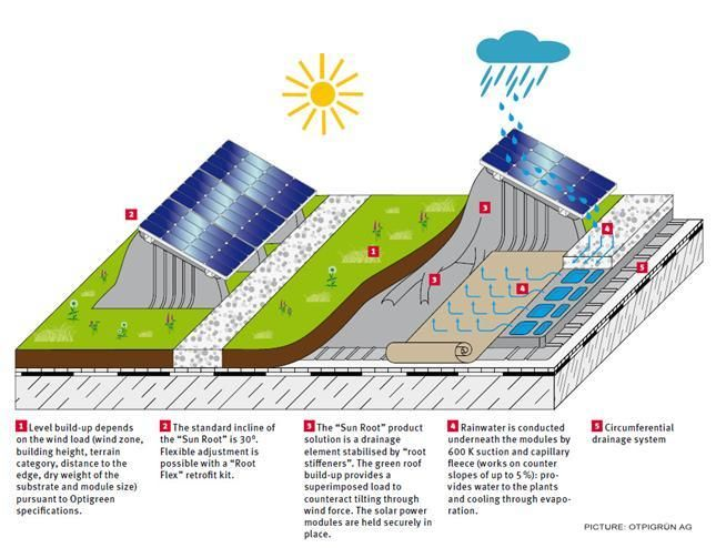 Solar Energy And Green Roofs Green Roof Technology Green Roof Advantages Of Solar Energy