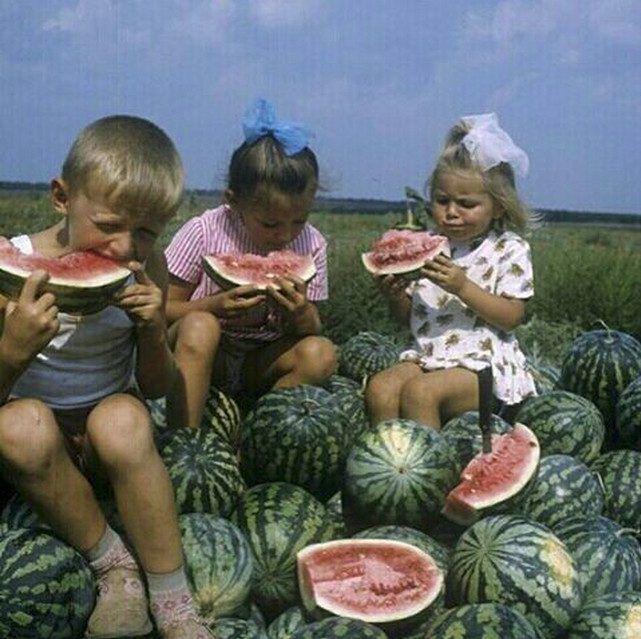 Как советские дети отдыхали летом? | Ретро фотография ...