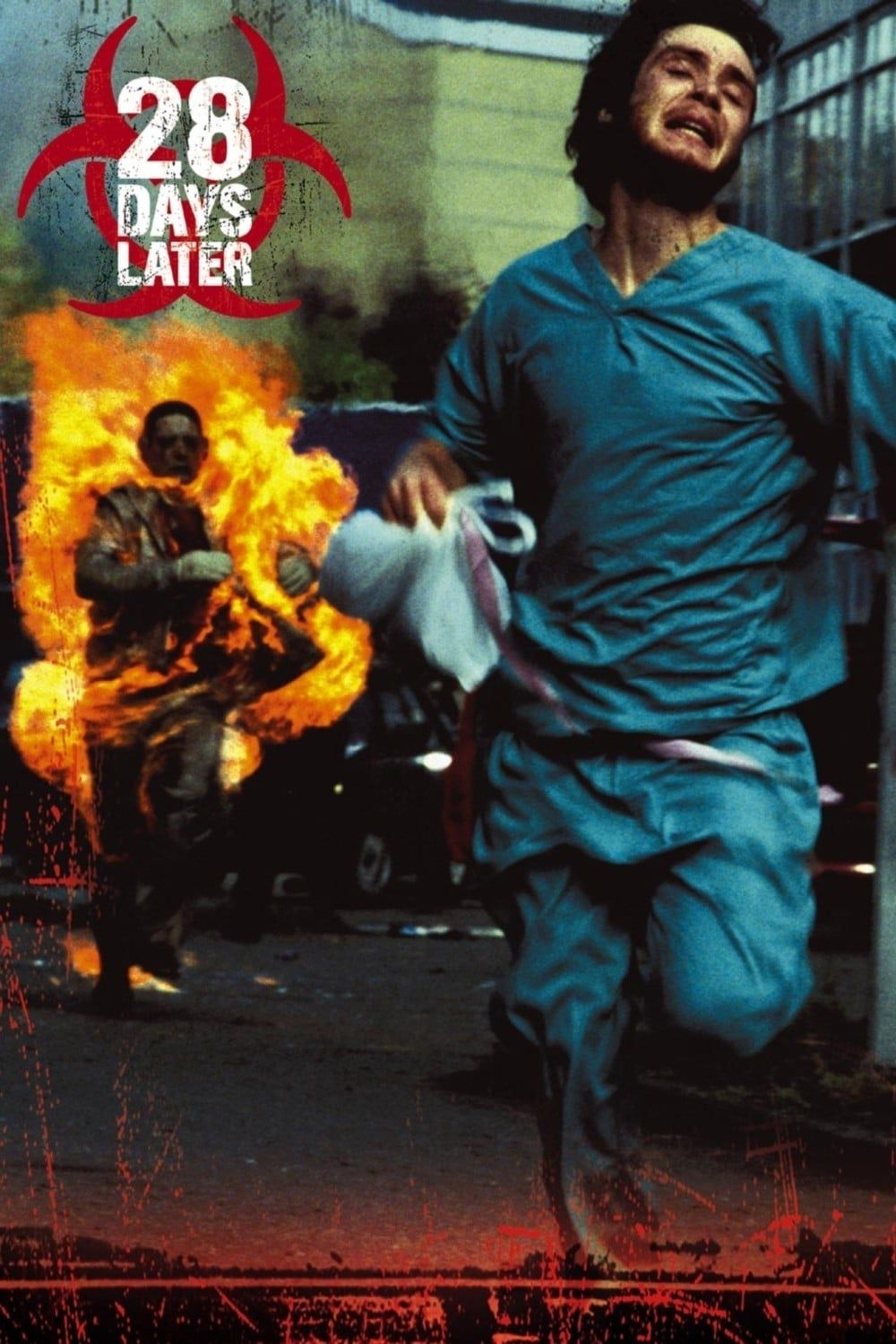 """28 DAYS LATER Silk Fabric Movie Poster 11/""""x17/"""" Horror Zombie"""