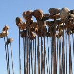 Sonic Reed Bed by Kathy Hinde's Sonic Reed Beds